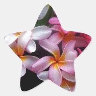 Racimo de flor brillante del rosa de la primavera pegatina en forma de estrella