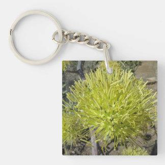 Racimo de flor gigante del agavo llavero cuadrado acrílico a doble cara