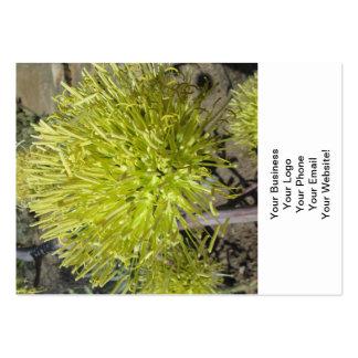 Racimo de flor gigante del agavo tarjetas de visita grandes