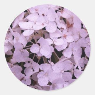 racimo de flor pegatina redonda