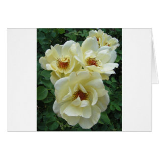 Racimo de flor tarjeta de felicitación