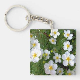 Racimo de flores del Potentilla Llavero Cuadrado Acrílico A Doble Cara