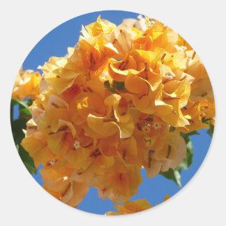 Racimo de flores tropicales del Bougainvillea de Pegatina Redonda