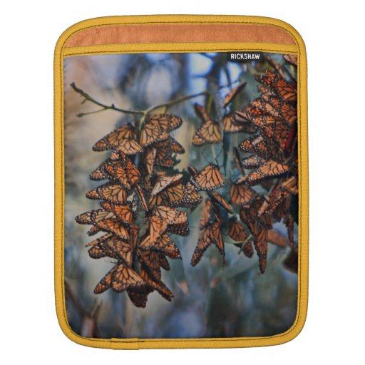 Racimo de la mariposa de monarca, en una manga del manga de iPad
