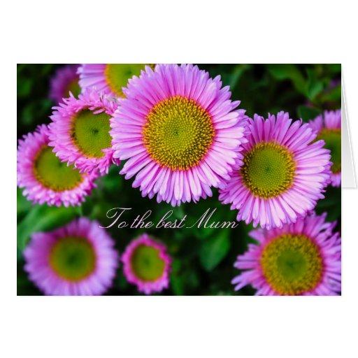 Racimo de la mejor momia de las margaritas rosadas tarjeta de felicitación