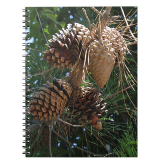 Racimo de los conos del pino libreta espiral