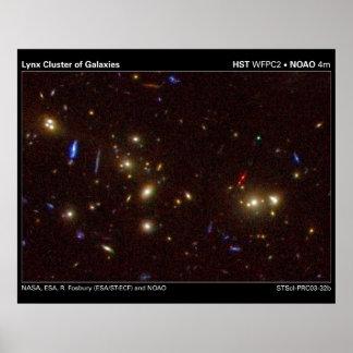 Racimo del lince de galaxias poster