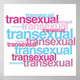 RACIMO DEL ORGULLO DEL TRANSEXUAL - PNG POSTER