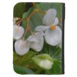 Racimo delicado de flores blancas