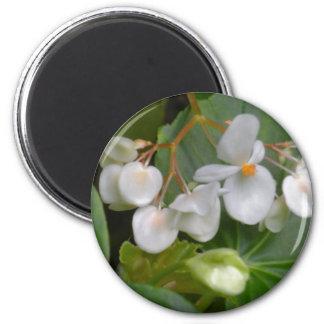 Racimo delicado de flores blancas imán redondo 5 cm