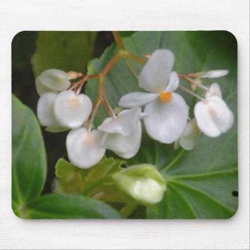 Racimo delicado de flores blancas alfombrilla de ratones