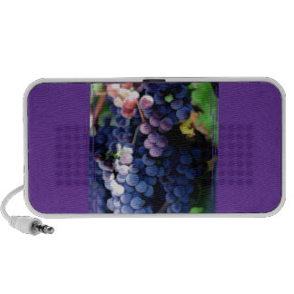 Racimo púrpura de las uvas altavoz de viaje