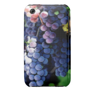 Racimo púrpura de las uvas funda para iPhone 3 de Case-Mate