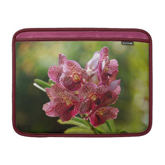 Racimo tropical de la orquídea de Vanda Funda MacBook