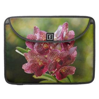 Racimo tropical de la orquídea de Vanda Funda Macbook Pro