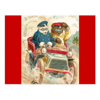 Racing Bears Postcard