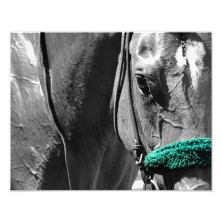 Racing from Beautiful Belmont Park Art Photo