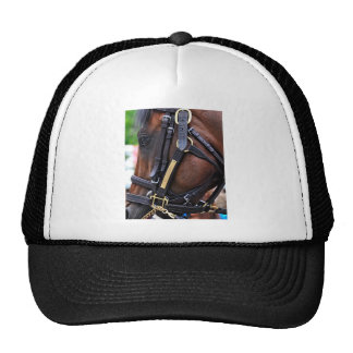 Racing from Saratoga Trucker Hat