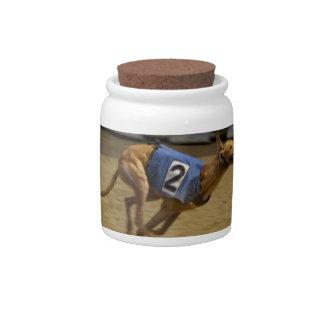 Racing Greyhound Candy Jar