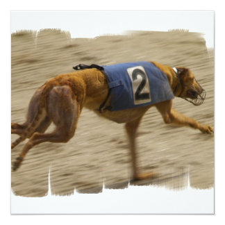 "Racing Greyhound Dog Invitation 5.25"" Square Invitation Card"