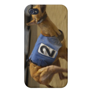 Racing Greyhound Dog iPhone Case iPhone 4/4S Case