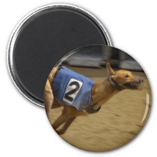 Racing Greyhound Magnet Fridge Magnet