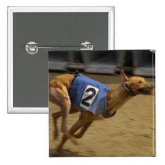Racing Greyhound Square Pin