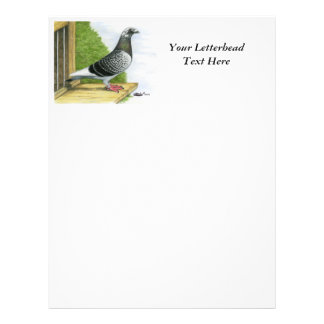 Racing Homer On the Landing Board Letterhead
