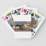 Racing Mallard Deck Of Cards