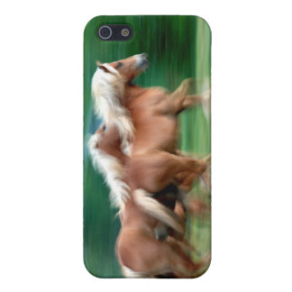 Racing Palomino Horse iPhone Case iPhone 5 Cases
