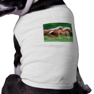 Racing Palomino Horses Dog Shirt