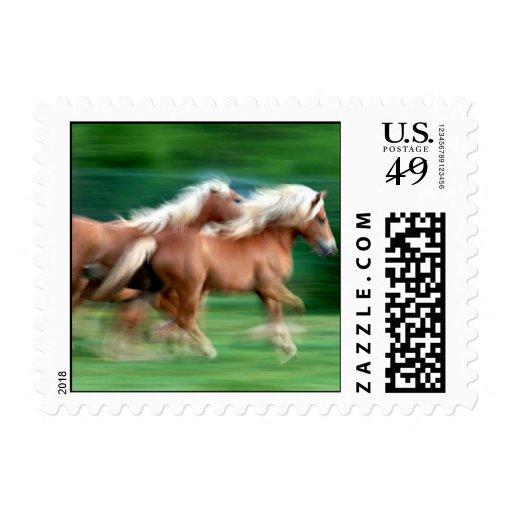 Racing Palomino Postage Stamps