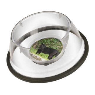 Racing Panther Pet Bowl