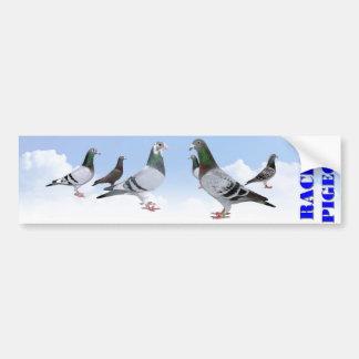 Racing Pigeons Pegatina Para Auto