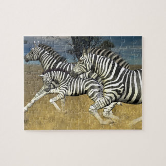 Racing Stripes, Zebra Puzzle