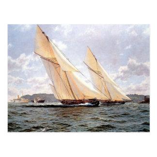 Racing yachts and steamships postcard