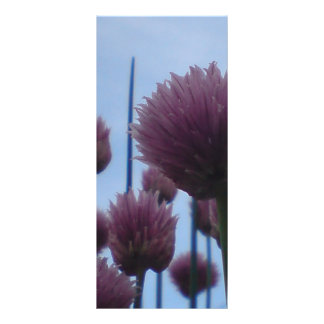 Rack Card - Chives    Image 1