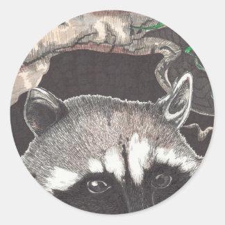 Racoon Classic Round Sticker