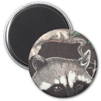 Racoon Imán Redondo 5 Cm