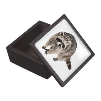 Racoon llano tamaños superiores de la caja de reg caja de regalo de calidad