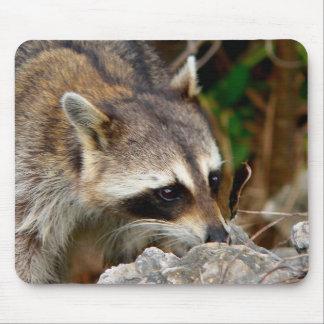 Racoon Mousepad