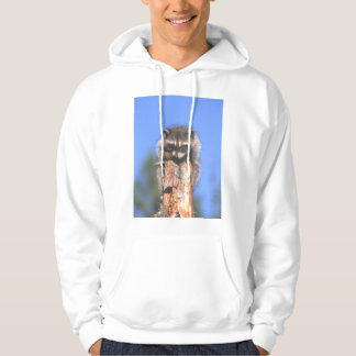 Racoon on Stump Hoodie