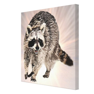 Racoon plain flash background canvas print