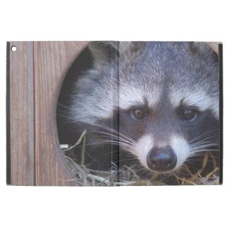 Racoon raccoon iPad pro case