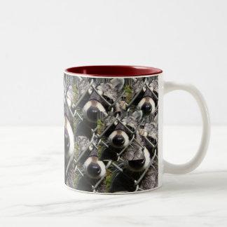 Racoon trouble Two-Tone coffee mug