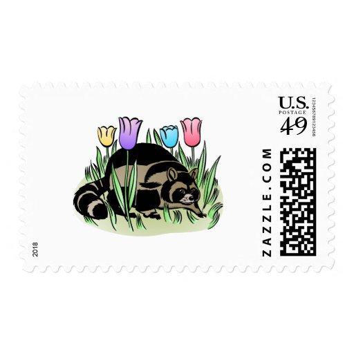 Racoon y tulipanes envio