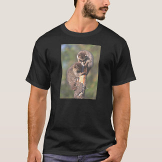 Racoons on Stump T-Shirt