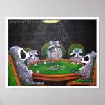 Racoon's Playing Poker Print