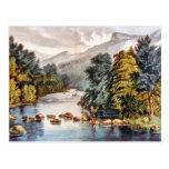 Racquet River--Adirondacks Postcard