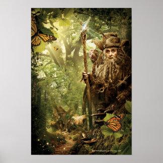 RADAGAST™ en bosque Póster